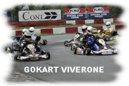 Questa immagine ha l'attributo alt vuoto; il nome del file è GOKART-1.png